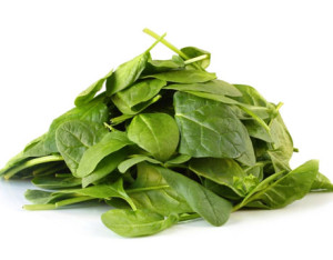 iron-source-spinach-lg
